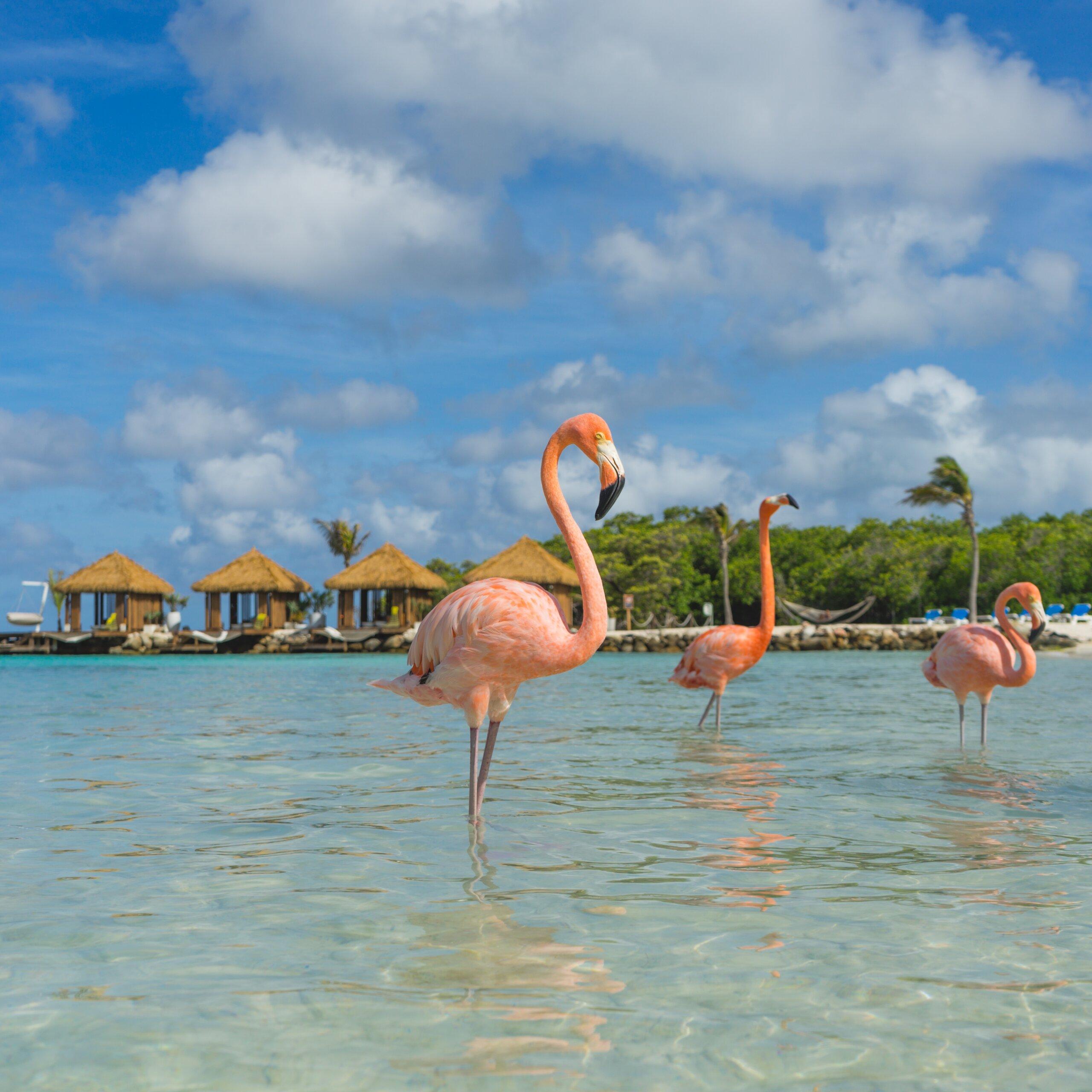 dating sites in Fiji-eilanden meest voorkomende dating sites
