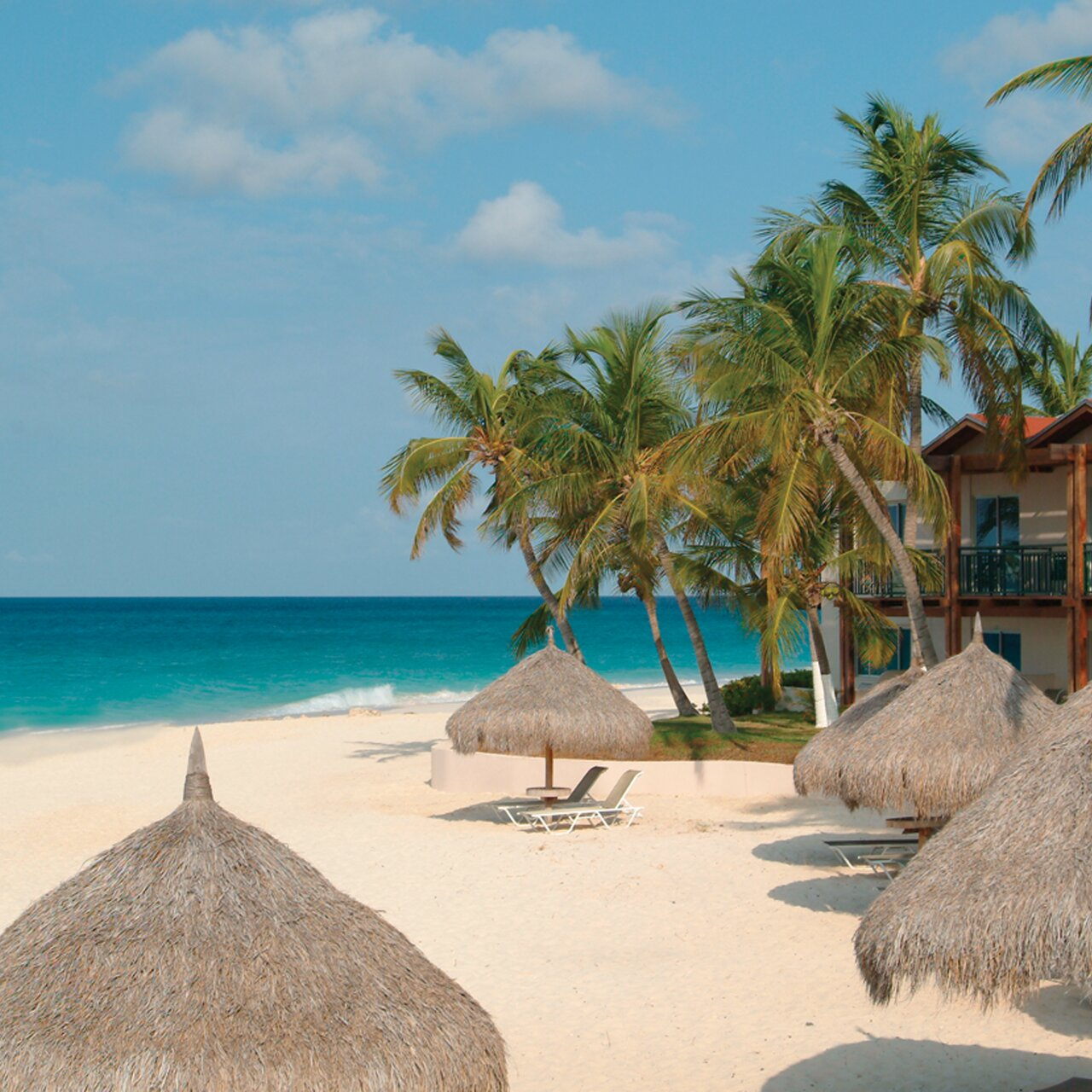 Aruba All Inclusive Resorts >> Aruba All Inclusive Beachfront Resorts Divi Resort On Druif Beach