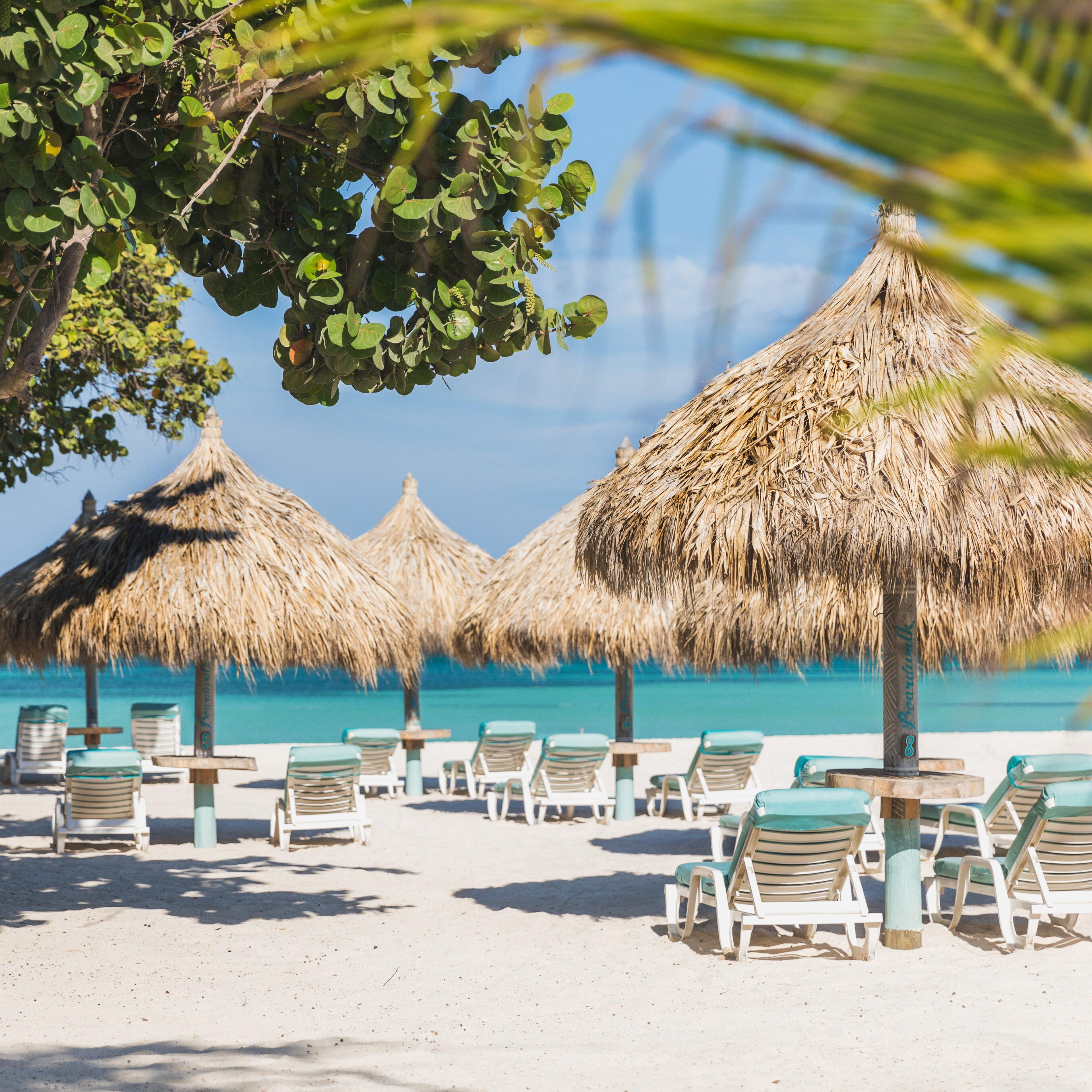 Best Breakfast In Palm Beach Aruba